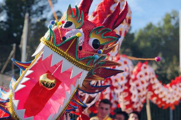 dragon chino zaragoza